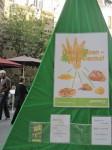 Protest gegen den Anbau von Gen-Weizen